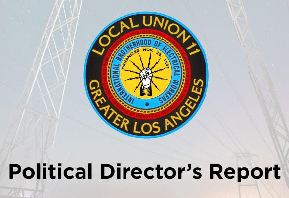 Political Director's Report: 2019 Scorecard